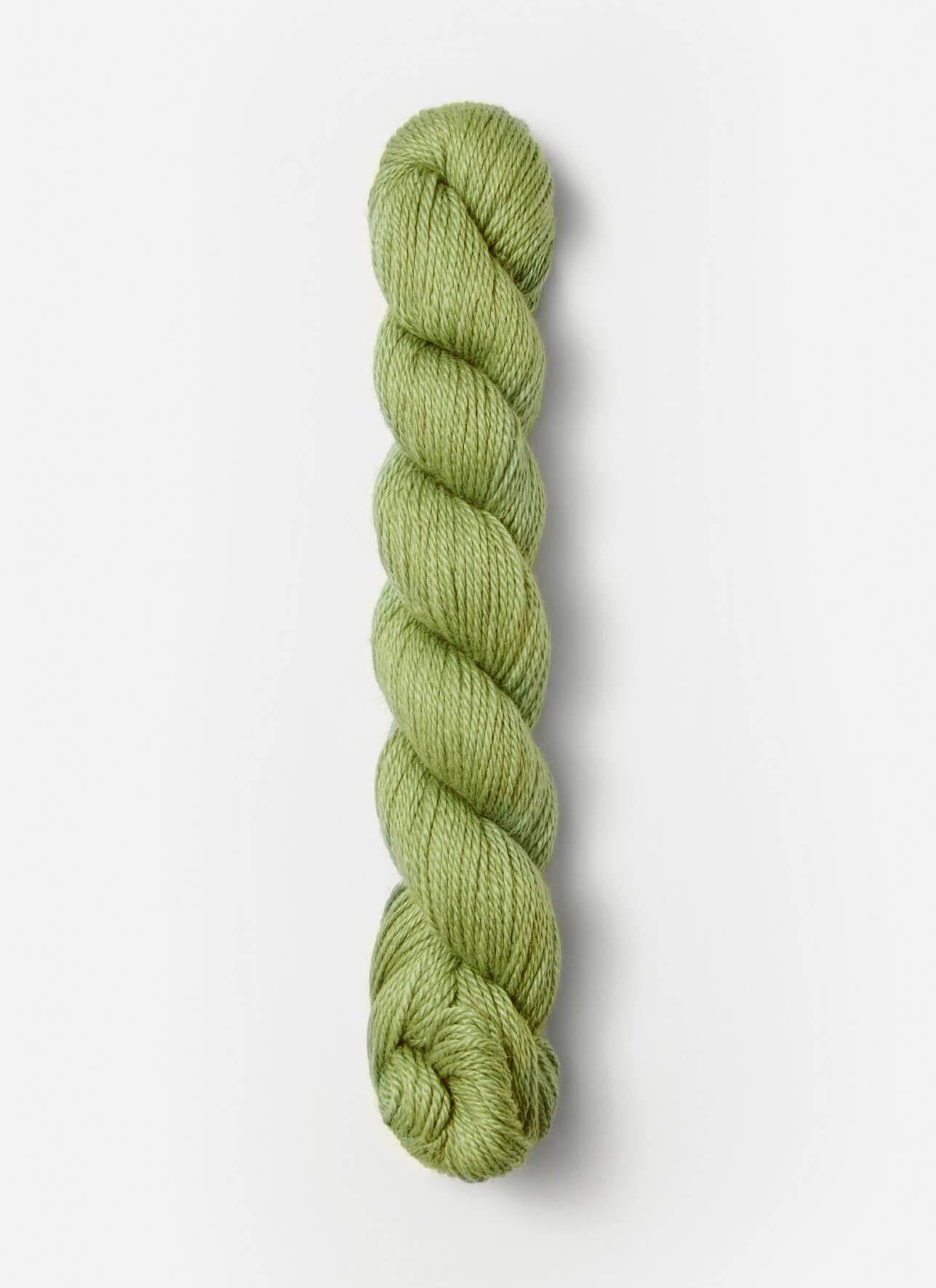 No. 131: Kiwi