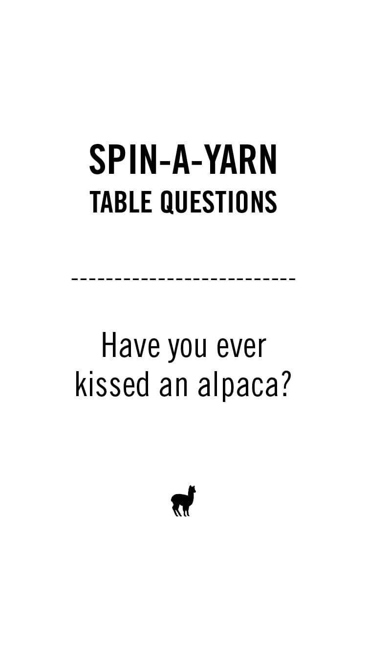 Spin-a-yarn-02